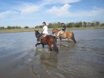 Horseback Riding in San Antonio