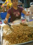 Bamboo worms in Chiang Mai Thailand. Copyright SeatofourPants.com