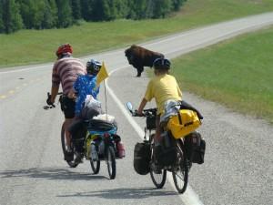Riding Alongside the Wild Bison. Copyright FamilyOnBikes.org