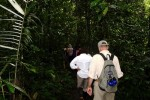 Heading Into the Jungle. Copyright CareerBreakSecrets.com