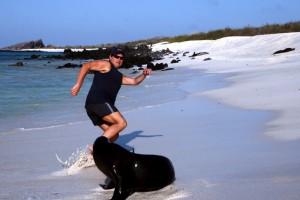 My sea lion encounter on Española Island in the Galapagos. CareerBreakSecrets.com