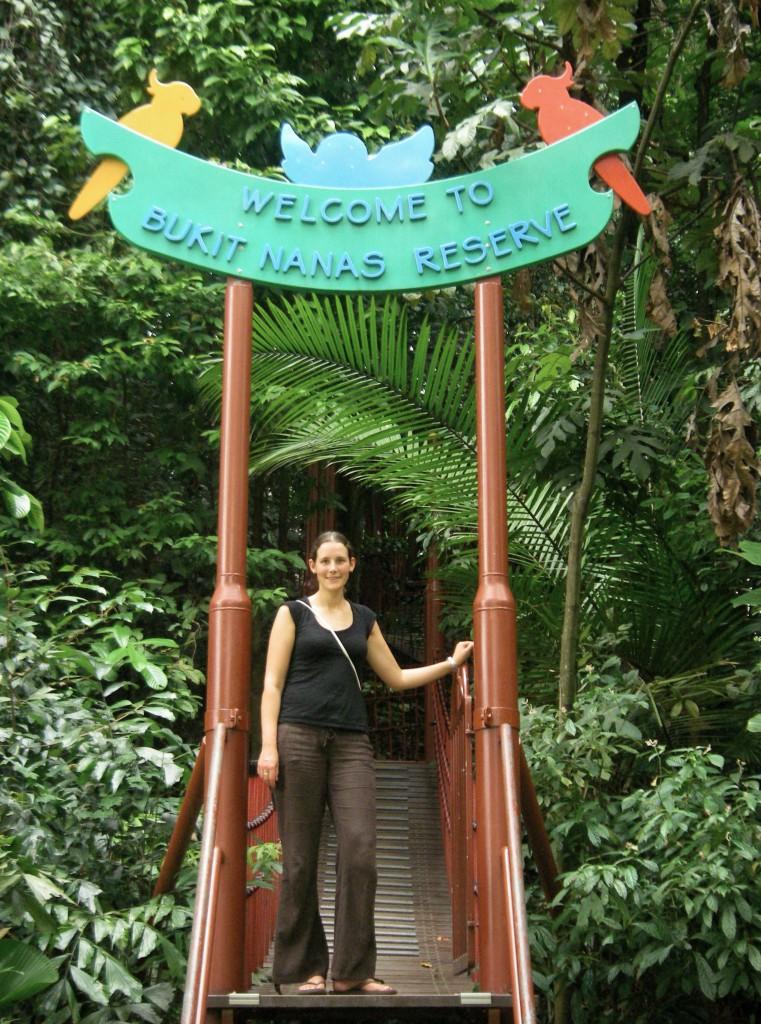 Kuala Lumpur, Bukit Nanas Reserve, career break travel adventures in Malaysia