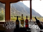 In the wine country in Mendoza, Argentina. Copyright ConsultingRehab.com
